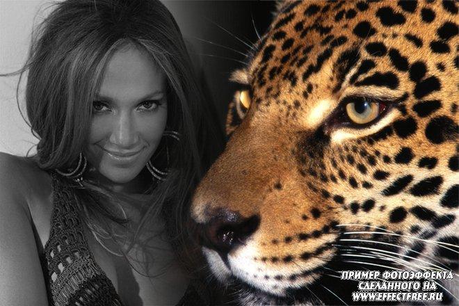 Стильный фотоколлаж с красивым леопардом, вставить фото онлайн