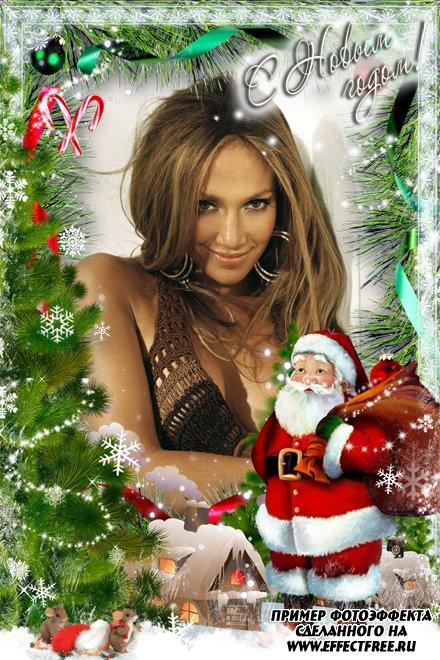Новогодняя рамка с дедом Морозом и елками, вставить фото в рамку онлайн