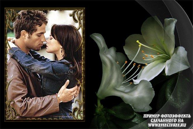 Рамка для фото влюбленных с белыми лилиями, сделать в онлайн фотошопе