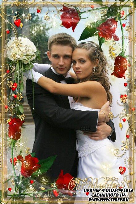Свадебная фоторамочка для молодоженов с цветами, сделать онлайн фотошоп