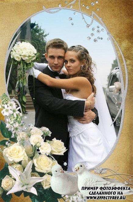 Свадебная фоторамка с двумя голубками и розами, сделать в онлайн фотошопе