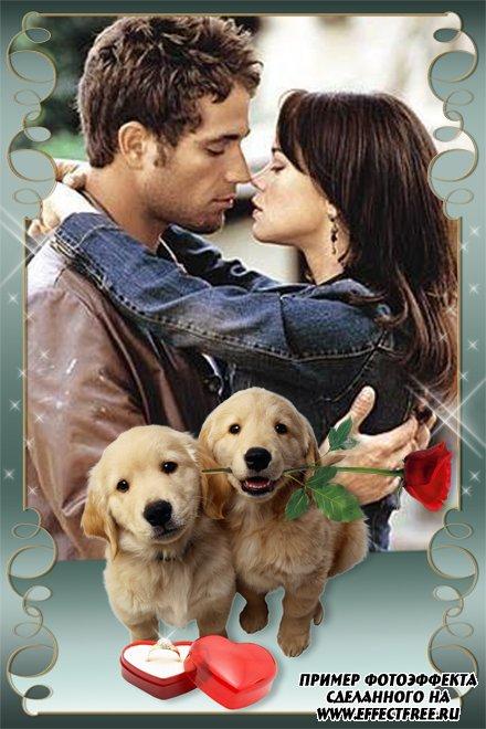 Рамка для влюбленных с двумя симпатичными щенками, сделать онлайн фотошоп
