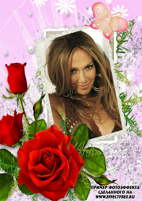 Нежная рамочка в розовых тонах с красной розой, вставить фото онлайн