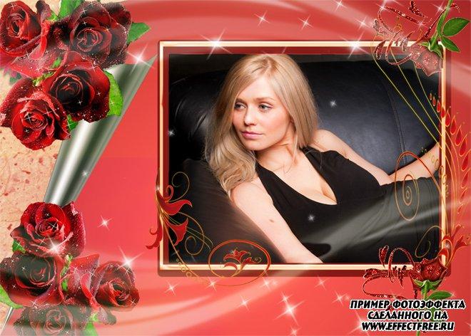 Рамка с великолепными красными розами, сделать в онлайн редакторе