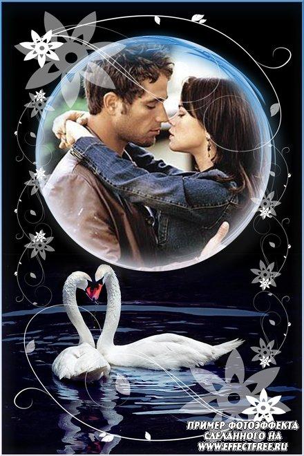 Фоторамка с белыми лебедями для влюбленных, сделать онлайн фотошоп