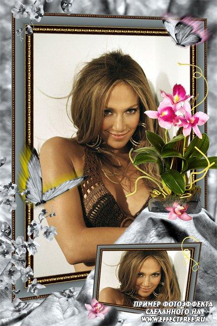 Рамка на 2 фото с красивыми бабочками и цветами, сделать в онлайн редакторе