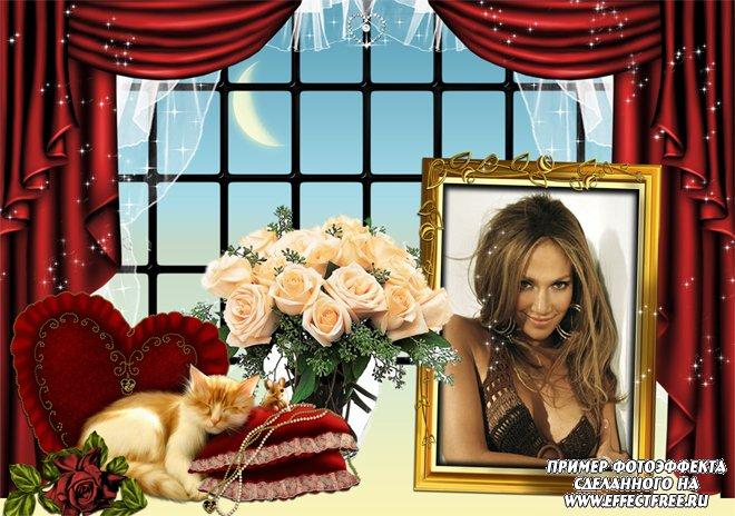 Рамочка для фото с котиком и букетом роз, сделать в онлайн фотошопе