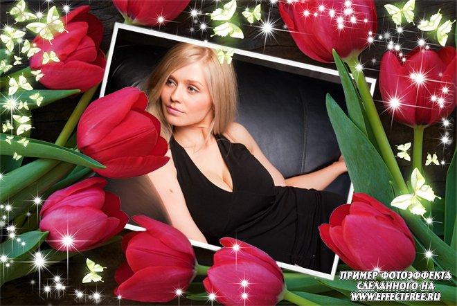 Рамка для фото с красными тюльпанами для женщин, сделать онлайн фотошоп