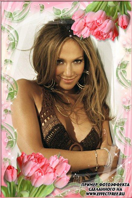 Рамка с весенним настроением и розовыми тюльпанами, сделать онлайн фотошоп
