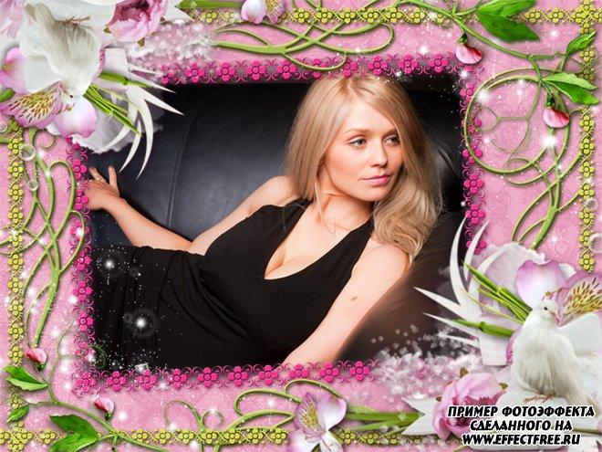 Рамка с орхидеями и голубями, сделать онлайн фотошоп