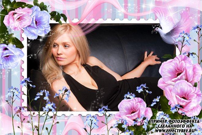 Изящная нежная фоторамка с цветами и голубем, сделать онлайн фотошоп