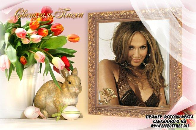 Рамка для фото к Пасхе с кроликом и цветами, сделать в онлайн фотошопе