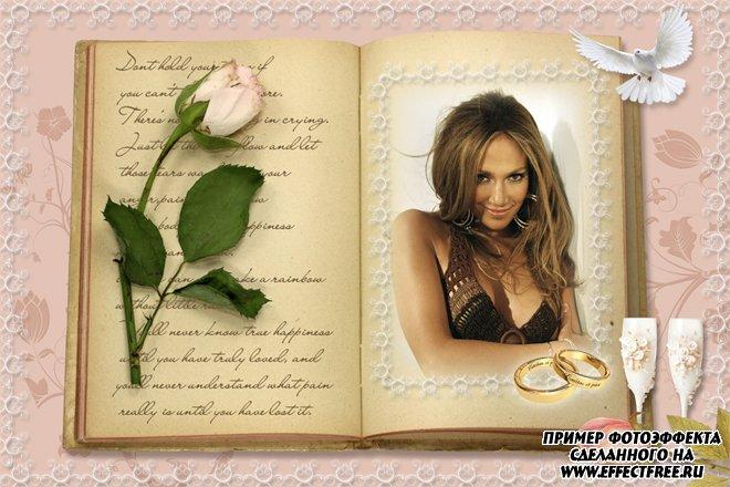 Рамка для фото с розовой розой в книжке, сделать в онлайн фотошопе