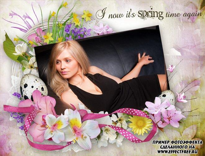 Весенняя рамка к Пасхе с цветами и яйцами, вставить фото онлайн