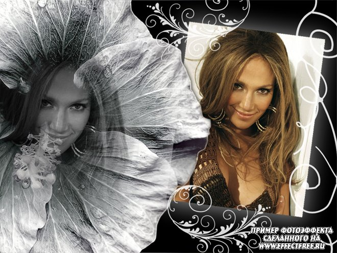 Новый фотоэффект на два фото с цветком, сделать онлайн