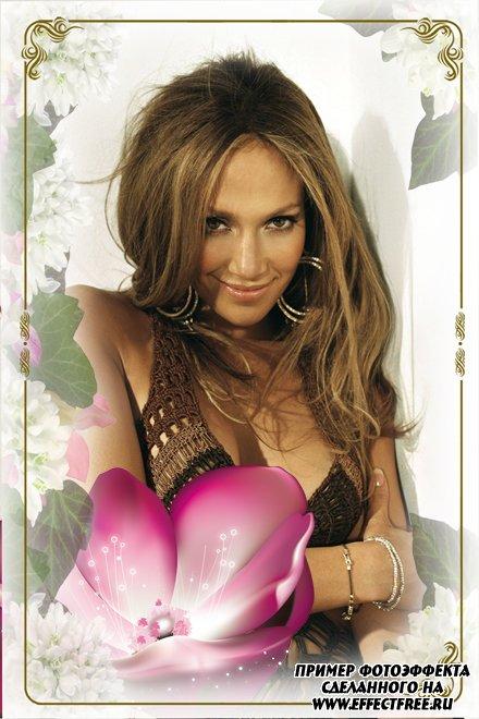 Фоторамка-накладка на фото с красивым цветком, сделать онлайн фотошоп