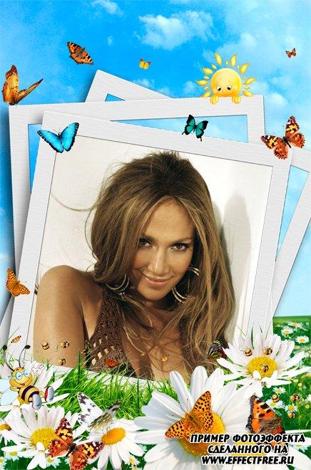 Фоторамка с полем ромашек и бабочками, сделать в онлайн фотошопе