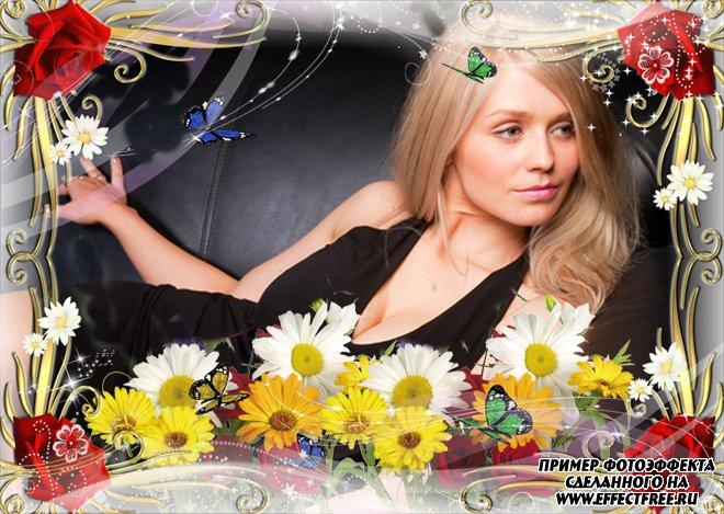 Рамка для фото с бабочками и ромашками, сделать в онлайн фотошопе