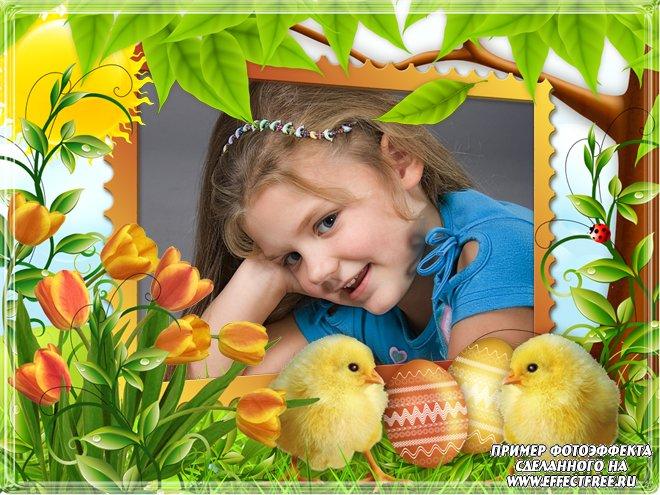 Сделать онлайн пасхальную фоторамку с цыплятами, редактор фото онлайн