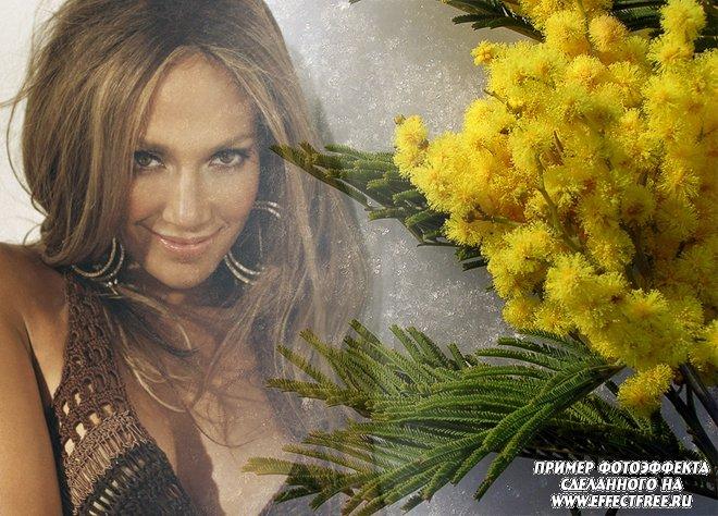 Красивый фотоколлаж с желтой мимозой, сделать онлайн фотошоп