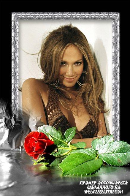 Вставить фото в рамку с красивой алой розой, сделать онлайн