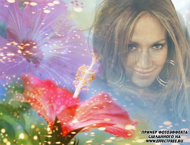 Яркий фотоколлаж с красным цветком онлайн