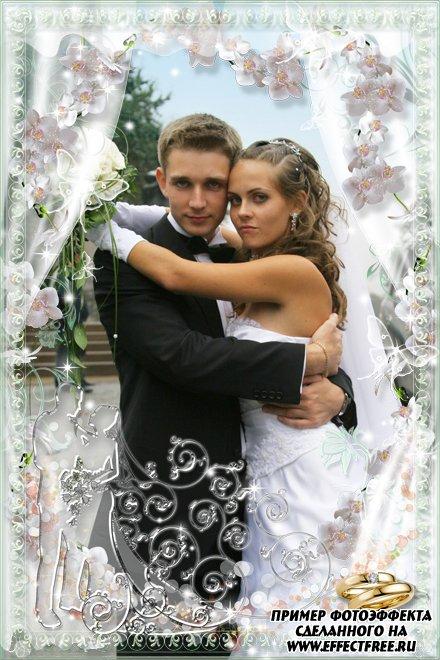 Свадебная фоторамочка с обручальными кольцами, сделать в онлайн фотошопе