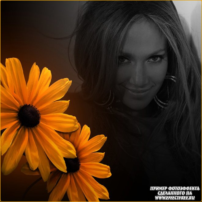Красивый фотоэффект с желтой герберой, вставить фото онлайн