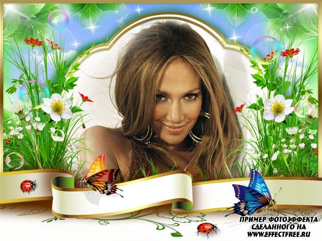 Фоторамочка с бабочками, сделать в онлайн фотошопе