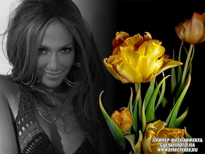 Фотоэффект с желтыми тюльпанами, вставить фото онлайн
