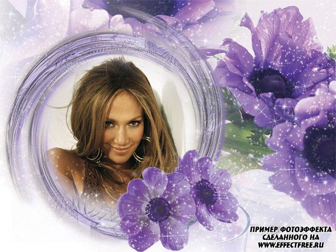 Фоторамочка с красивыми фиолетовыми цветами, сделать онлайн фотошоп