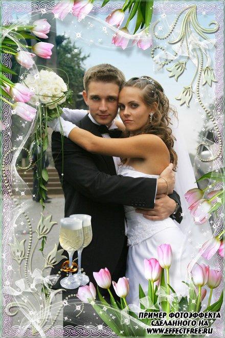 Свадебная фоторамка с красивыми тюльпанами, сделать в онлайн редакторе