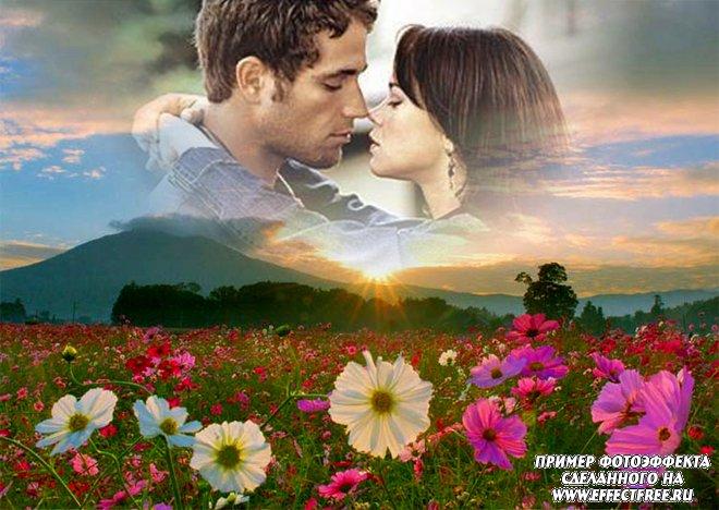 Красивый летний фотоэффект на фоне цветочного поля, вставить фото онлайн