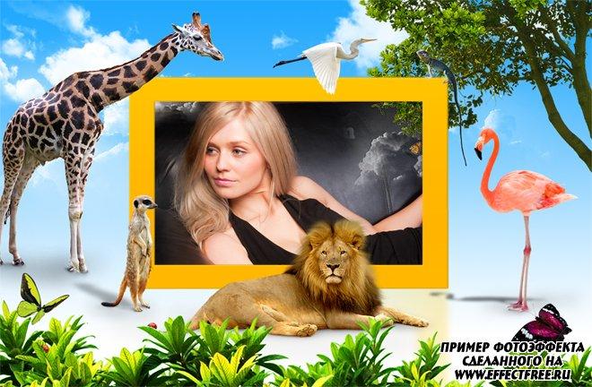 Рамка для фото с африканскими животными, сделать онлайн фотошоп