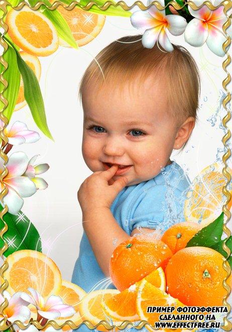 Рамка для фото с дольками апельсина, сделать в онлайн фотошопе