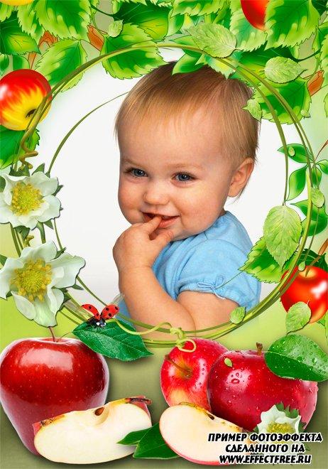 Рамка для фото с красивыми яблочками, вставить фото онлайн