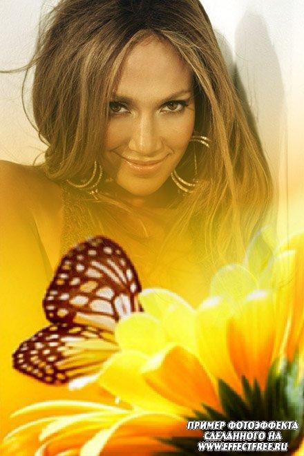 Нежный фотоэффект с бабочкой и белым цветком, вставить фото онлайн
