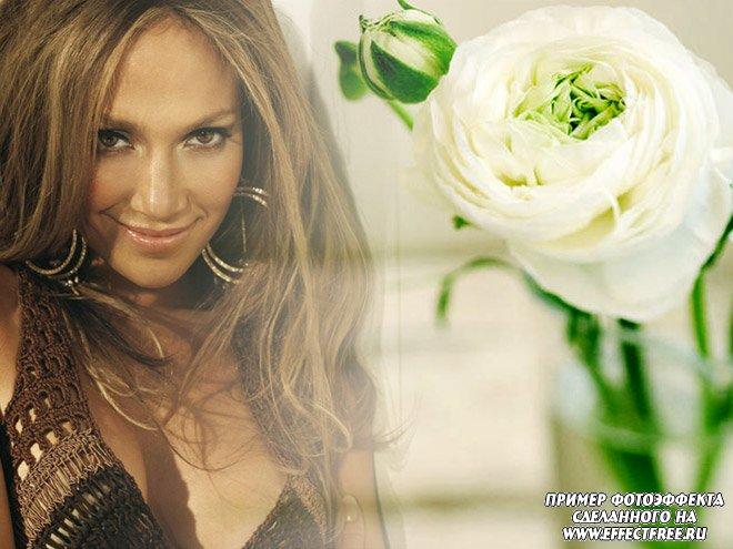 Фотоколлаж на фоне белых цветов, вставить фото онлайн