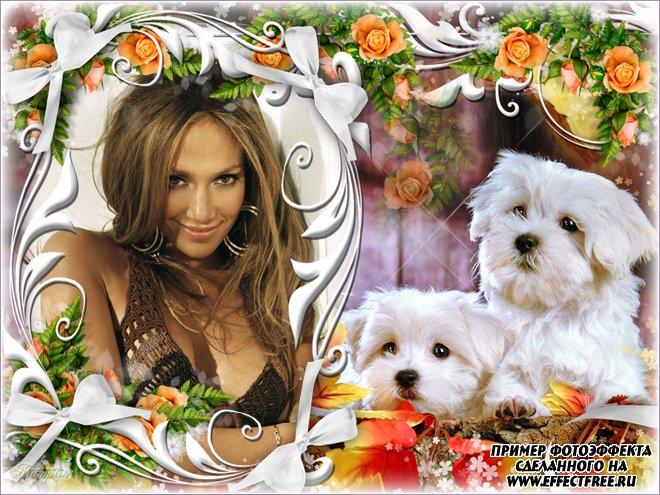 Рамка с цветами и милыми щенками, сделать онлайн фотошоп