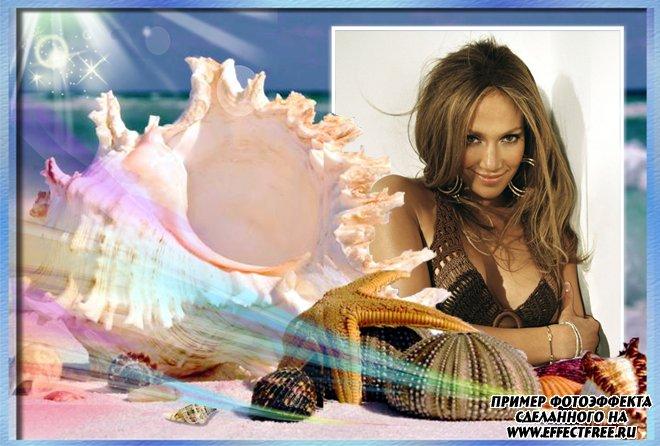 Фоторамка для фото на море с морской ракушкой, сделать в онлайн редакторе