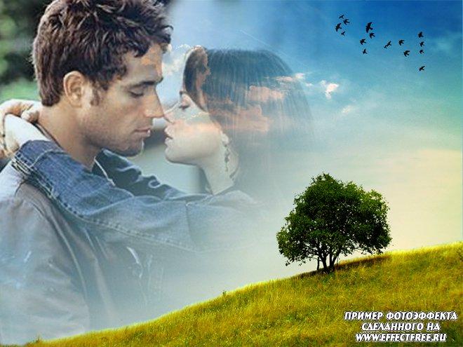 Романтический фотоэффект на фоне неба с деревом, сделать в онлайн редакторе