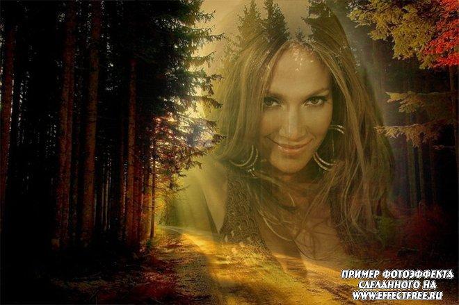 Романтический фотоколлаж на фоне леса, вставить фото онлайн