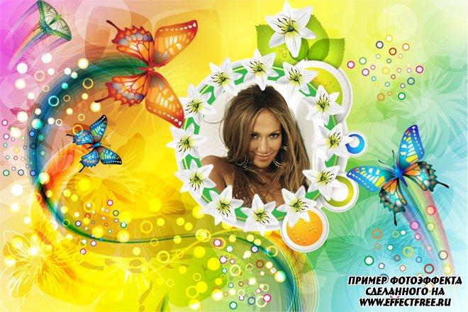 Яркая красочная фоторамка с бабочками, сделать в онлайн редакторе