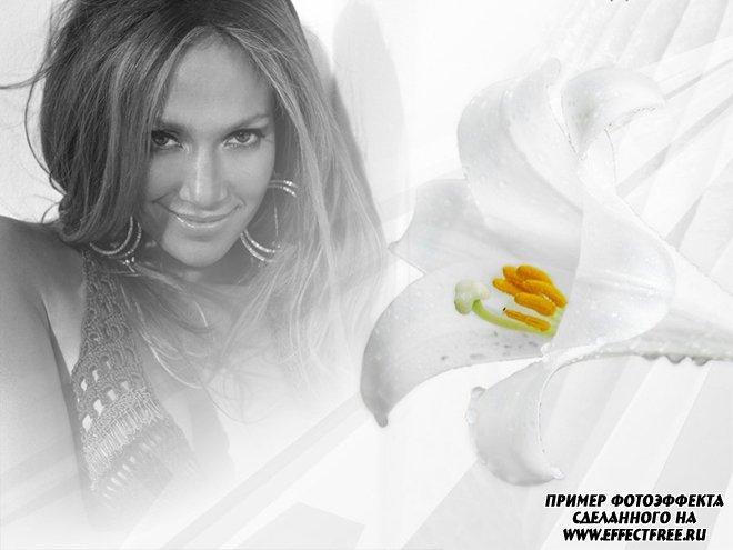 Нежный женский фотоколлаж с белым цветком лилии, вставить фото онлайн