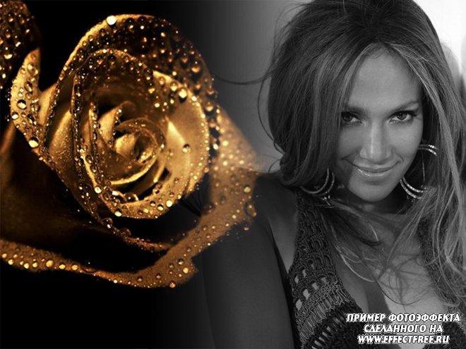 Фотоэффект с золотистой розой и черно-белой фотографией, сделать онлайн