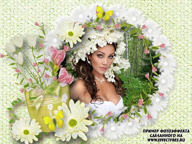 Полевые цветы, красиво оформить фото в цветочную рамку онлайн
